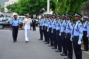 India–Mauritius relations - Image: Admiral RK Dhowan inspecting a guard of honour in Mauritius