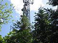 Aerial mast at Lincoln Hill - geograph.org.uk - 1353378.jpg