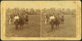After the chase. The unlucky captive, from Robert N. Dennis collection of stereoscopic views.png