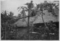 Agostini - Tahiti, plate page 0080.png