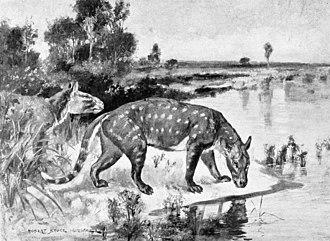 Tylopoda - Life restoration of Agriochoerus antiquus