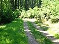Ahhh, maj na masywie Raduni - panoramio.jpg
