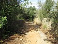 Albufeira, Country lane with dry stone wall in Enxertia (2).JPG