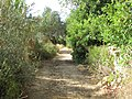 Albufeira, Country lane with dry stone wall in Enxertia (5).JPG