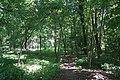 Allée bois de Boulogne 10.jpg