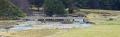 Allanaquoich Bridge (Mar Lodge Estate) from Linn of Dee road (31DEC14).png