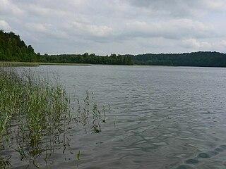 Almajas. Almajo ežeras netoli Ginučiai. Aukštaitijos nacionalinis parkas. Foto:Andrius.v