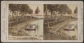 Along the beach at Kattskill (Catskill) House, Lake George, from Robert N. Dennis collection of stereoscopic views.png