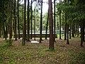 Amfiteatr Leśny w Mońkach (1).jpg