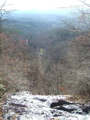 Amicalola Falls State Park - View from the top of the falls