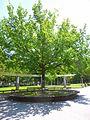Amorebieta - Parque Zelaieta, Memorial en recuerdo de las víctimas de la Guerra Civil 1.jpg
