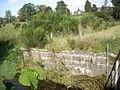 An old bridge abutment by the Tarland Burn - geograph.org.uk - 1483018.jpg