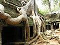 Angkor-112191.jpg