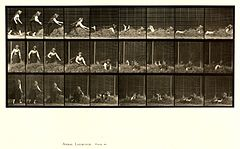 Animal locomotion. Plate 455 (Boston Public Library).jpg