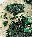 Antlerite-199904.jpg