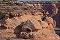Apache County, AZ, USA - panoramio (20).jpg