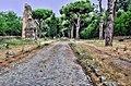 Appian Way (explored^ January 30, 2014) - Flickr - trishhartmann.jpg