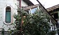 Apples tree and wooden house, Tbilisi.jpg