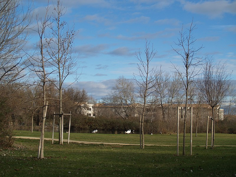 The park Jardin de Gaston at Saint-Martin de Crau