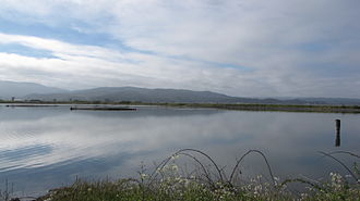 Arcata Wastewater Treatment Plant and Wildlife Sanctuary - View over southern end of Arcata Marsh.
