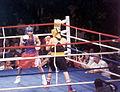 Armedforces boxing.jpg