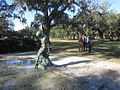 Audubon Park Fountain 3.JPG