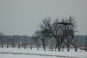 Auschwitz tower.png
