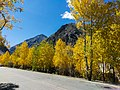 Autumn colors on the KKH.jpg