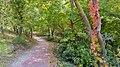 Autumn season in Butanic Garden فصل پاییز در باغ بوتانیکال تفلیس 30.jpg