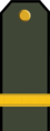 BG-Army-OR4.png