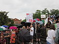 BP Oil Flood Protest NOLA brollys BP Oil Pigs.JPG