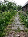 Back-yard path behind an old farmhouse in Drenthe.jpg