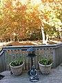 Backyard of New Jersey suburban house in Autumn 20121021 152943.jpg