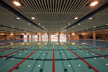Olympic size swimming pool wikipedia for How much is an olympic swimming pool