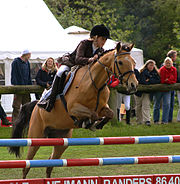 A youth competitor show jumping in Denmark