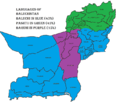 Baluchistan language map.png
