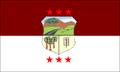 Bandera de ñemby paraguay.PNG