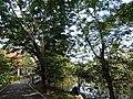 Bang Kachao, Phra Pradaeng District, Samut Prakan, Thailand - panoramio (5).jpg