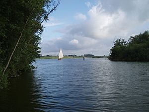 River Ant - Barton Broad
