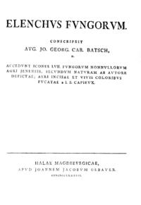 Elenchus fungorum (книга Бача) cover