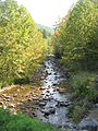 Bear Creek (Loyalsock Creek) 1.JPG