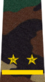 Belarus MIA—09 Lieutenant rank insignia (Camouflage).png