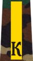 Belarus Military Academy—Internal Troops Department—01 Cadet-Master Sergeant rank insignia (Camouflage).png