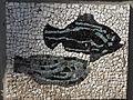 Belgrade zoo mosaic0165.JPG