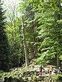 Bergpark Wilhelmshöhe - Parkpflege 2020-05-14.JPG