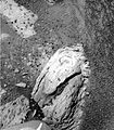 Berry rock sample.JPG