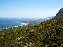 Betty's Bay.jpg