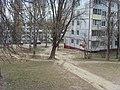 Bezhitskiy rayon, Bryansk, Bryanskaya oblast', Russia - panoramio (121).jpg