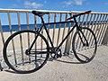 Bicicleta 0002.jpg
