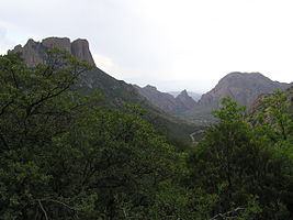 Big Bend National Park P9092719.jpg